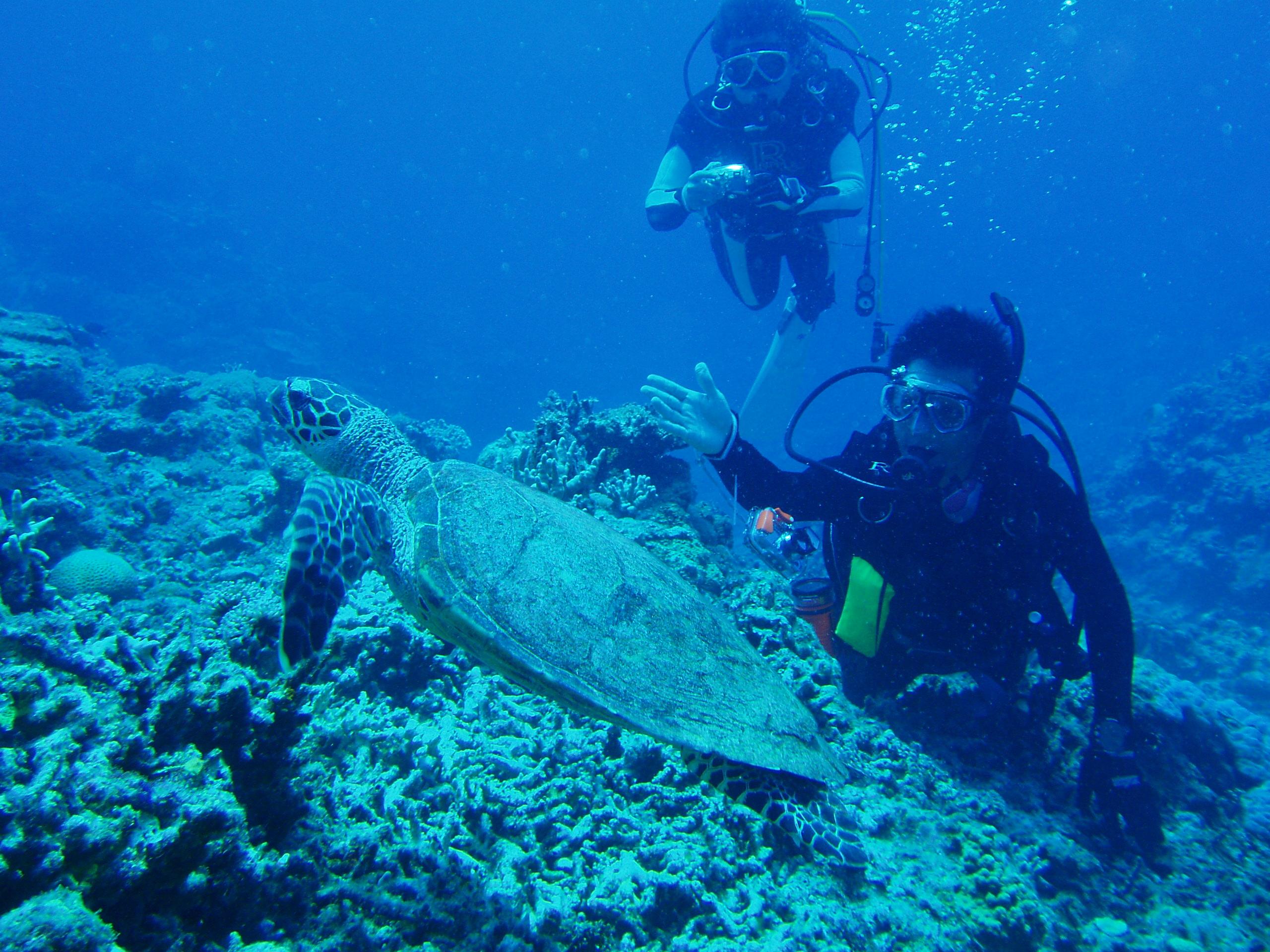 8月30日 ポイント1 安室漁礁 ポイント2 イジャカジャ ポイント3 ガヒ前 水温28℃ 透明度25m