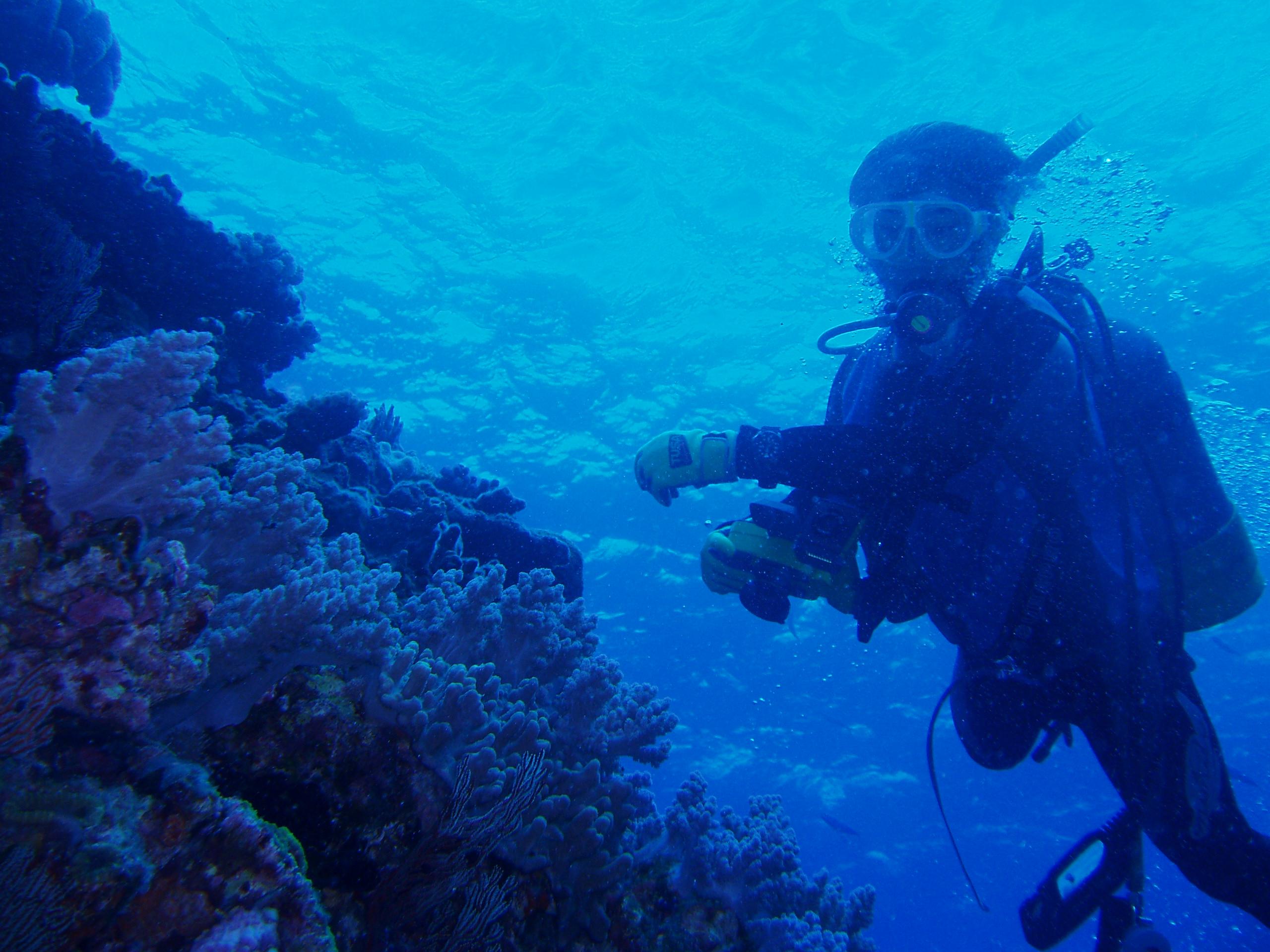 10月25日 ポイント1 ウフタマ ポイント2 平瀬 水温27℃ 透明度35m