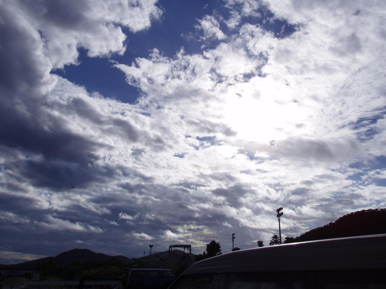 1月29日 久々の晴れ間。