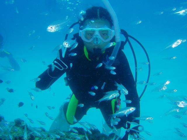 体験ダイビング30本