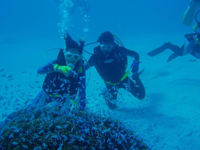 安全潜水で楽しく