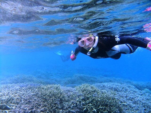 楽しい体験ダイビング