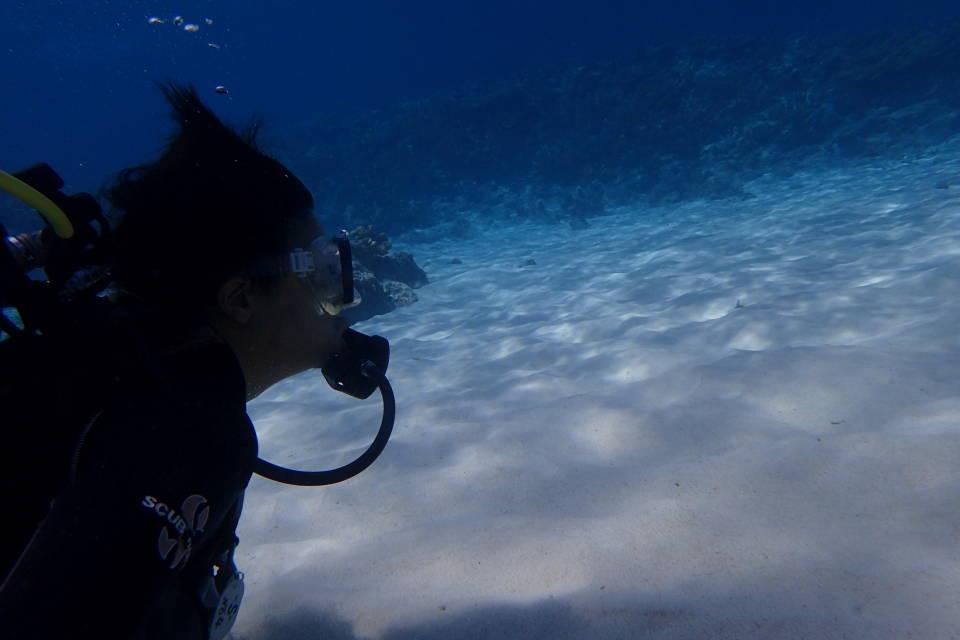体験ダイビング~☀